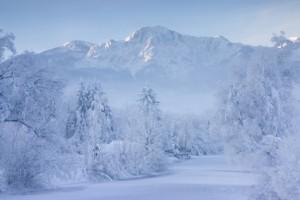 Eiskalter Wintermorgen