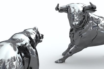 Bear and bull of chrome