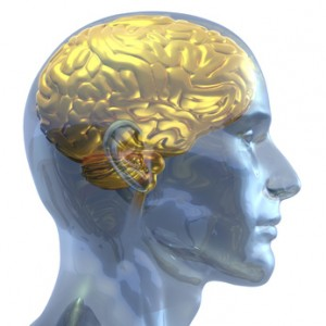 3D rendered illustration of a transparent crystal human head with brain made out of gold shown inside